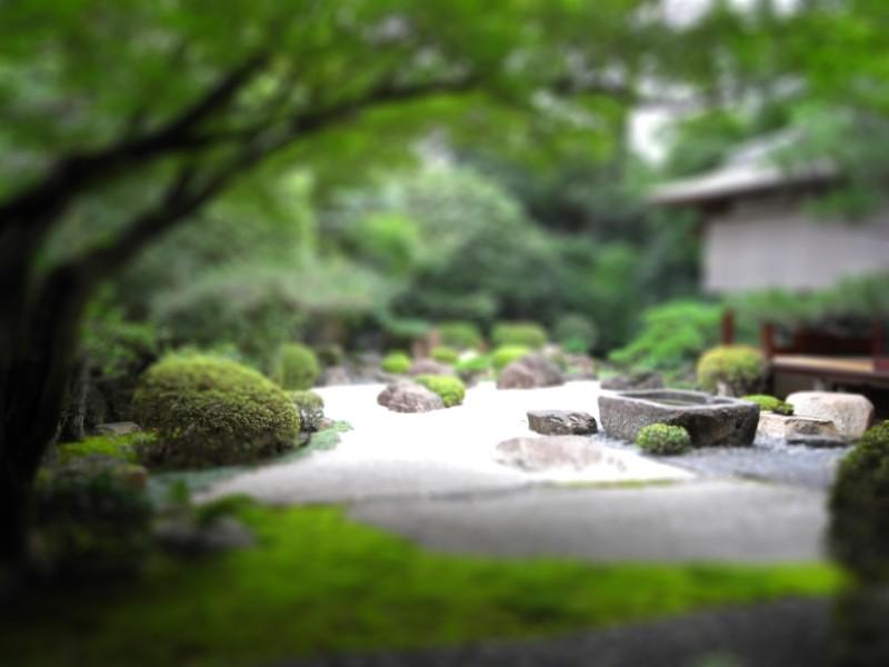 http://tiltshiftmaker.com/photos/japanese-garden.jpg